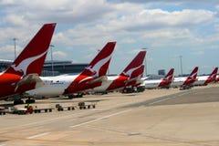 悉尼机场, Qantas航空公司,澳洲 库存图片