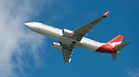 Qantas A330 no vôo Fotos de Stock Royalty Free