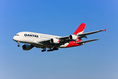 Qantas Airbus A380 in flight. Stock Photos