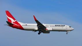Qantas Airways Boeing 737 som landar på Auckland den internationella flygplatsen Royaltyfria Foton