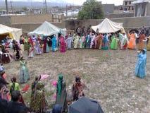 Qashqai bröllop Arkivfoton