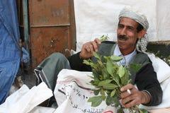 Qat förbrukning i yemen Arkivbild