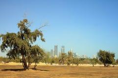 Qatar de esverdeamento Imagem de Stock