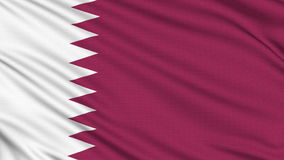Qatar Flag. stock video