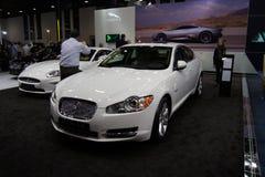 Qatar Motorshow 2011 - jaguar Imagem de Stock