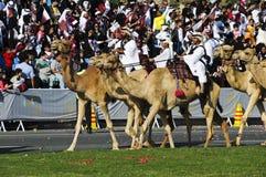 Qatar-Nationaltag 2010 Stockfotos