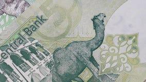 Qatar riyal Banknotes background. Qatar riyal Banknotes abstract background, 360 rotation stock footage