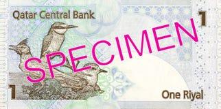 1 qatari riyal bank note bank note full frame reverse. Specimen stock photography