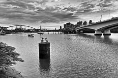 QE Brisbane River CBD Bridge Left BW Stock Images