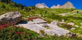 Qeyras της Anne λιμνών sainte στις Hautes Alpes στη Γαλλία στοκ εικόνες