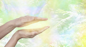 Qi Gong  healing Energy. Female hands held in parallel position with a golden glow between with a yellow green ethereal woodland background and copy space Stock Photography