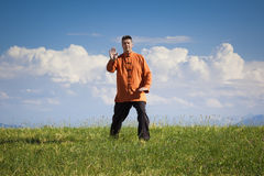 Qi-Gong outdoor Royalty Free Stock Photography