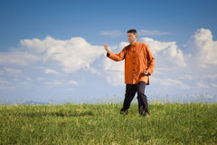 Qi-Gong outdoor Stock Photography