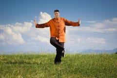 Qi-gongo al aire libre foto de archivo libre de regalías