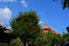 Qiancao tempel Royaltyfri Bild