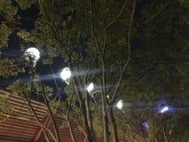 Qiandengmeer in foshan Stad royalty-vrije stock foto's