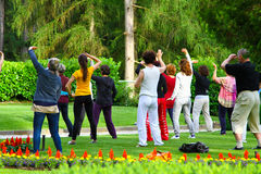 Qigong. In the park outside meditation Royalty Free Stock Image