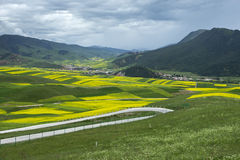 Qilian County of Qinghai Province scenery Royalty Free Stock Image