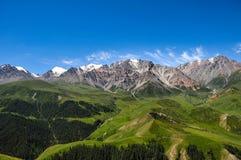 Qilian góry z śniegiem na szczycie i lasem przy dnem w wiośnie z jasnym niebieskim niebem, Zdjęcie Royalty Free