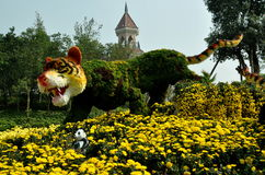 Qingbaijiang, Китай: Тигр Topiary празднества цветка Стоковое фото RF