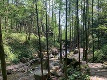 Qingcheng berg royaltyfri fotografi