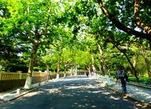 Qingdao οκτώ μεγάλη πορεία περασμάτων Στοκ Εικόνα