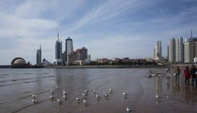 Qingdao landskap royaltyfria bilder