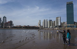 Qingdao scenery Stock Images