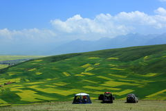 Qinghai door source bucolic royalty free stock images