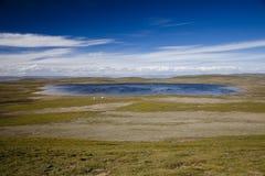 Qinghai - het Plateau van Tibet Stock Afbeeldingen
