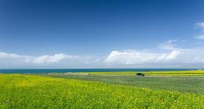 Qinghai Jeziorny Sceniczny teren Obraz Stock