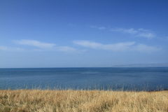 Qinghai lake. The qinghai lake in china Royalty Free Stock Photo