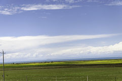 Qinghai lake. Is like a necklace in the grassland Stock Photography