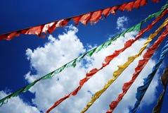 Qinghai Lake Royalty Free Stock Photo