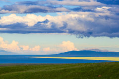 Qinghai Lake and Rape Flower Royalty Free Stock Photo