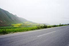 Qinghai Lake Road Royalty Free Stock Images