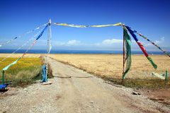 Qinghai Lake scenery Stock Photo