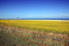 Qinghai Lake scenery Royalty Free Stock Photography