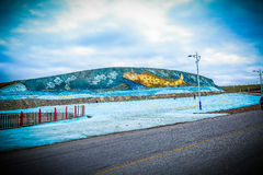 Qinghai lake Stock Photos