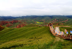 Qinghai Qilian Zhuoer Mountain scenery and Cole flowers Stock Photos