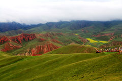 Qinghai Qilian Zhuoer Mountain scenery and Cole flowers Royalty Free Stock Photos