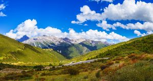 Qinghai Tibet Plateau. The autumn scenery of the Qinghai Tibet Plateau Royalty Free Stock Images