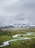 The Qinghai - Xizang Plateau Royalty Free Stock Images