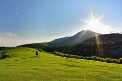 Qingtiangang Grassland stock photo