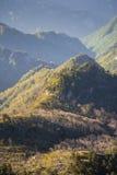 Qinling berg Royaltyfri Fotografi