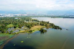 Qionghai湖鸟景色Xichangï ¼的ŒChina 免版税图库摄影