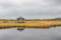 Qixinghu wetland park Autumn scenery Royalty Free Stock Photography