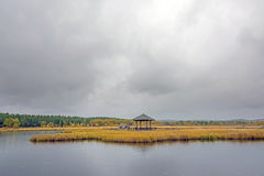 Qixinghu wetland park Autumn scenery Royalty Free Stock Images