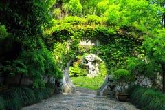 QiYuan trädgård i det suzhou porslinet Royaltyfri Bild