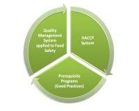 Qms gmp Hacp и программа продовольственной безопасности иллюстрация штока